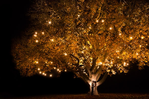 Stunning photo of a married couple standing under Crockwell farms's famous tree