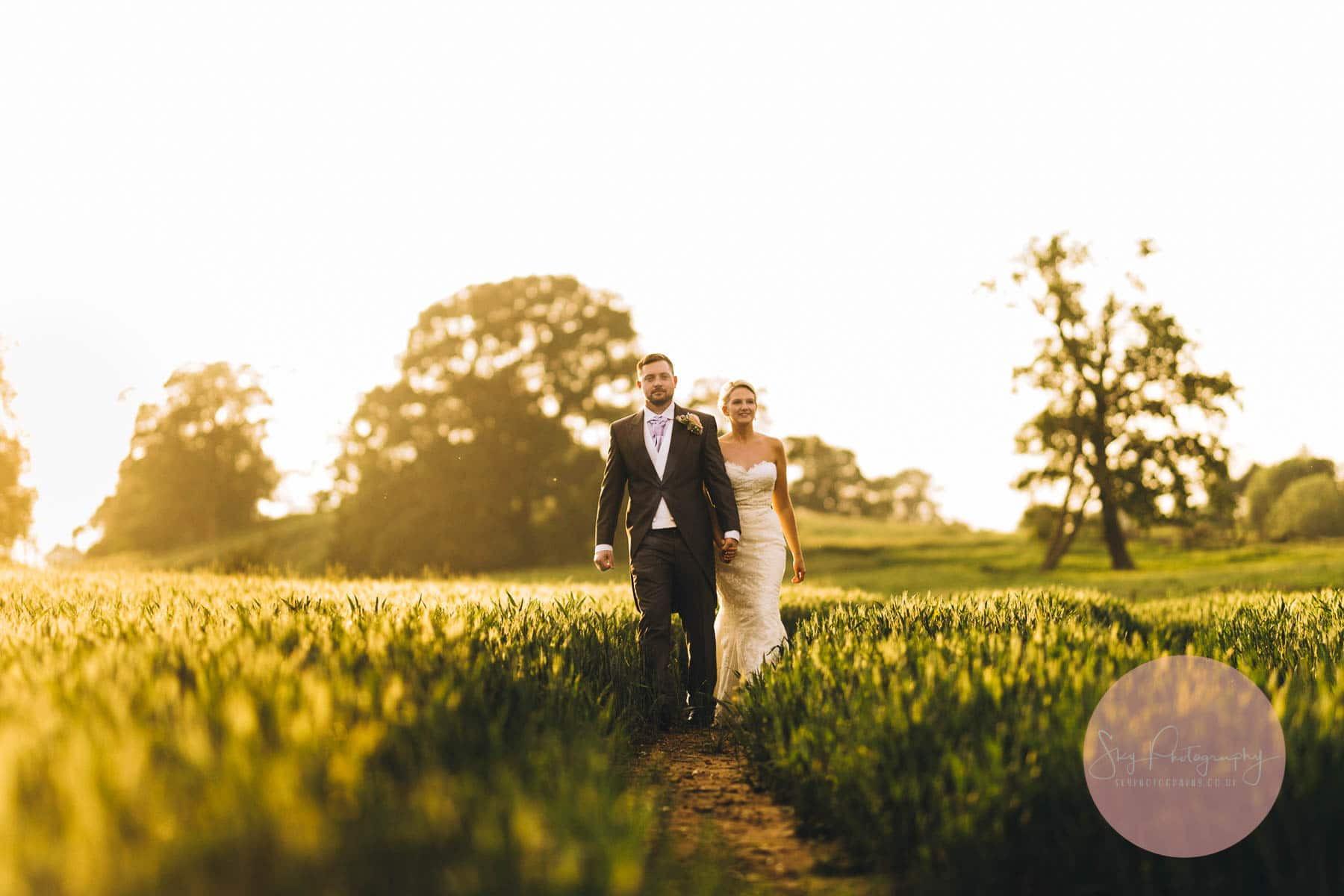 Bride and groom walking through a corn field at dusk golden hour