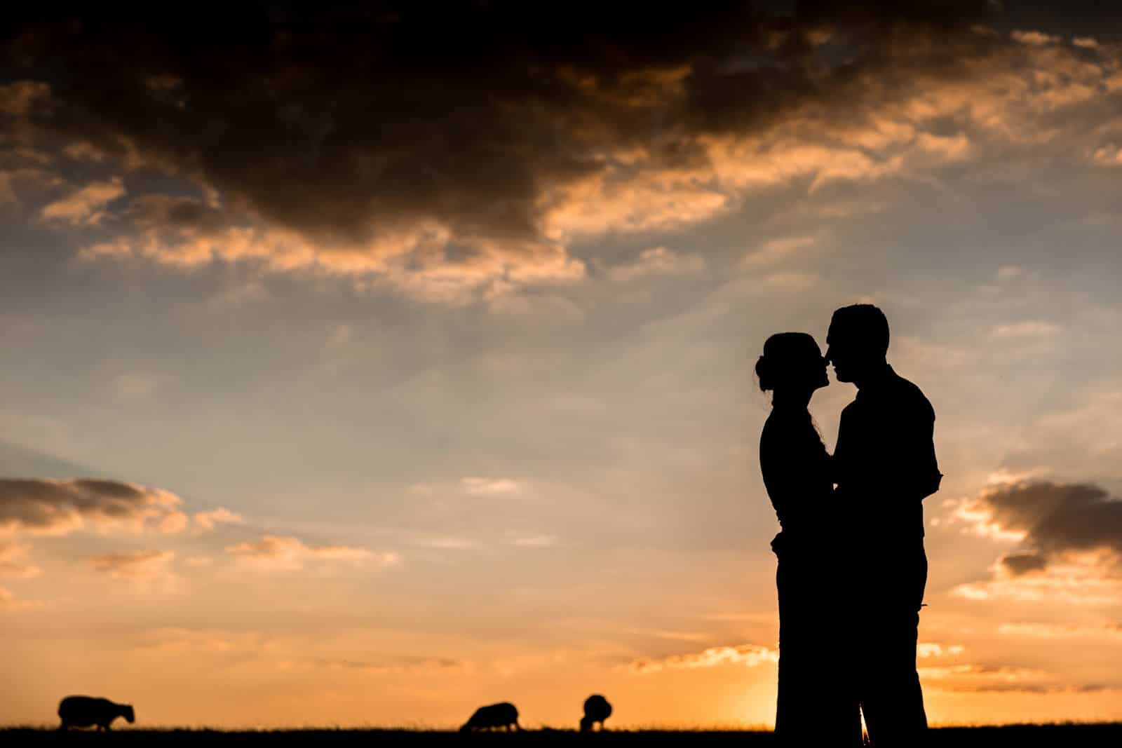 Dodford Manor silhouette of couple and sheep, an incredible photo