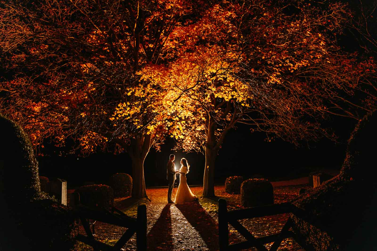 The night gardens at Wicksteed Park couple under a tree lit using magmod photo