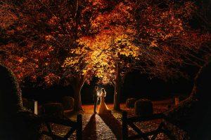 Wedding Photography Best of-115